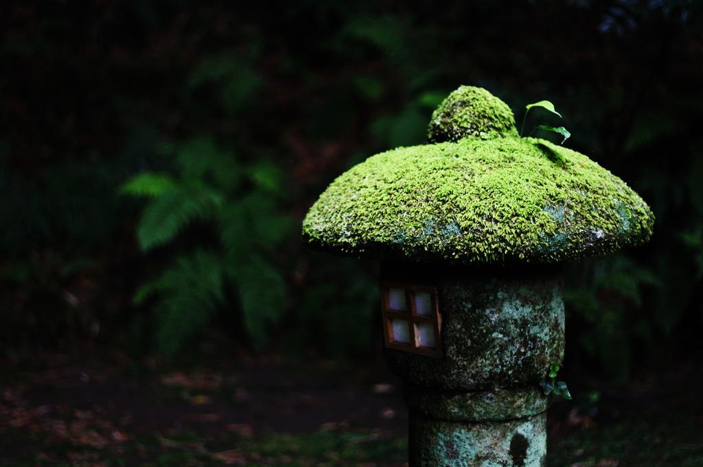 報国寺 灯篭