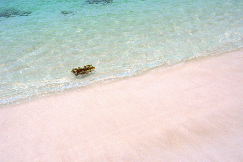 6月の白良浜