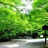 三井寺にて