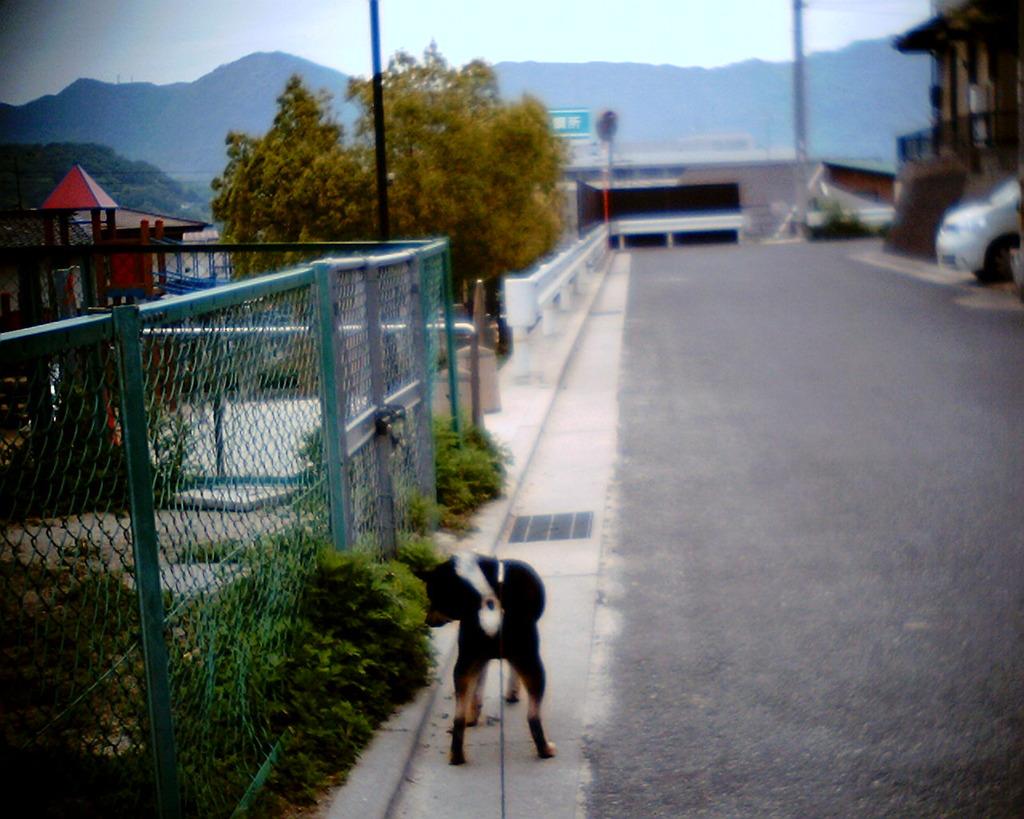 BEAN散歩