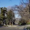 冬の川口グリーンセンター