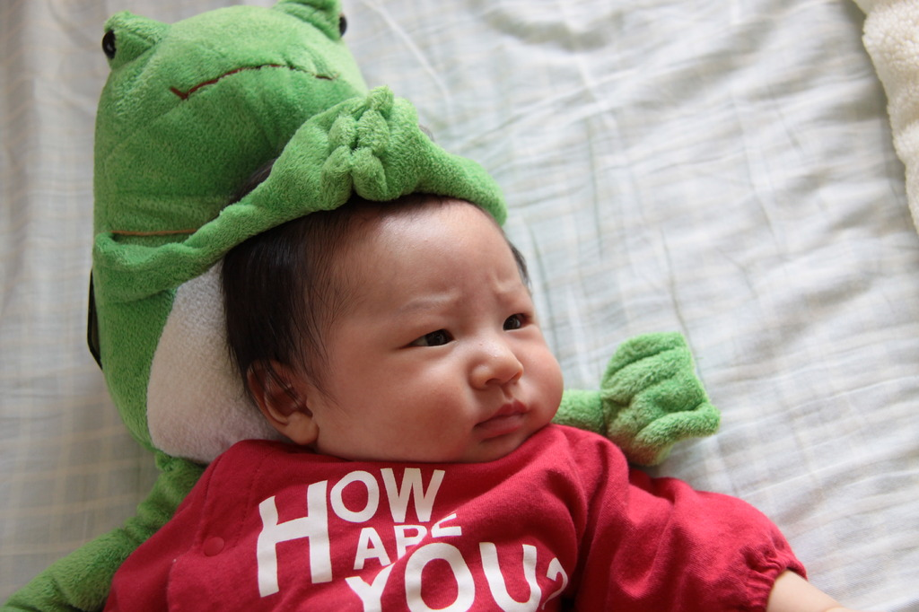 カエルさんと一緒。