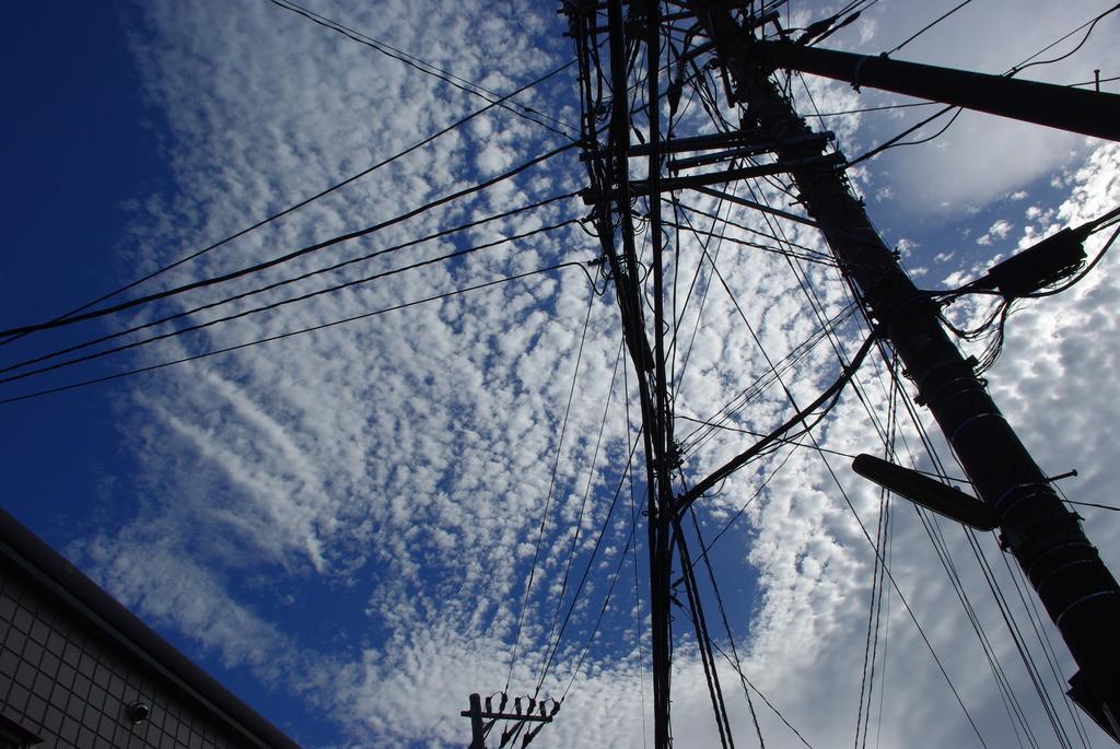 空に浮かぶクモの巣。