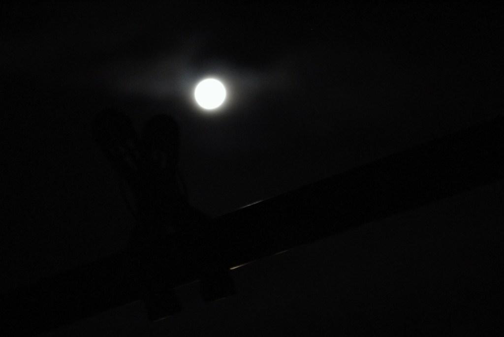 月夜に浮かぶ黒い影。