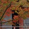 太山寺本堂(国宝)