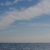 12月の海