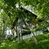 保土ヶ谷の家4