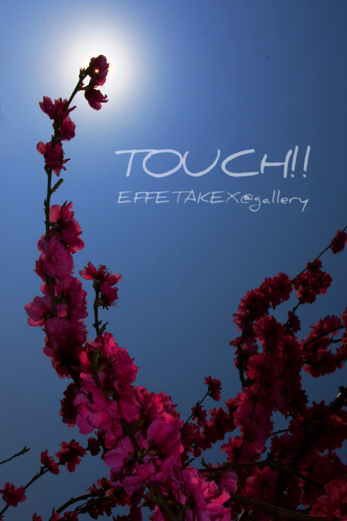 Touch!!
