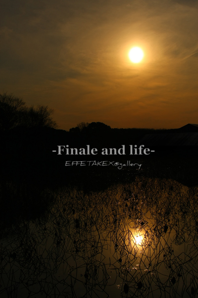 finale and life