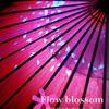 Flow blossom