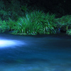 水面の青さ
