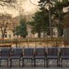 Vienna chairs