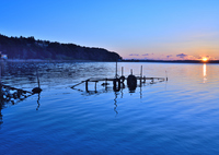 NIKON NIKON D750で撮影した(夜明けの涸沼)の写真(画像)