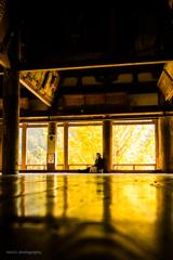 秋さがしの旅。。。 ♡広島&宮島 no3