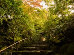 和の美へ続く石段... 秋さがしの旅 ♡京都 no.4