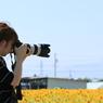 カメラ女子 ひまわりを撮る