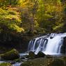 秋の蓼科大滝