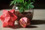 折り紙のお星さま有難う^^