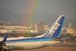RAINBOW  ANA ♪