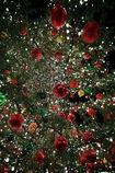 Christmastree@Ebis Garden Place