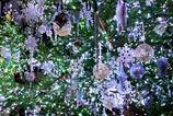 White Christmas @Denpark
