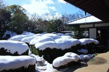 雪の唐様庭園(お餅風)  @丈山苑