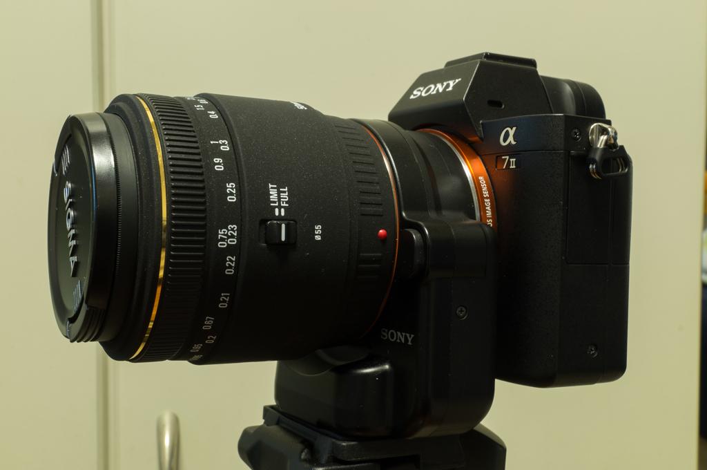 α7Ⅱ+シグマ50mmマクロ