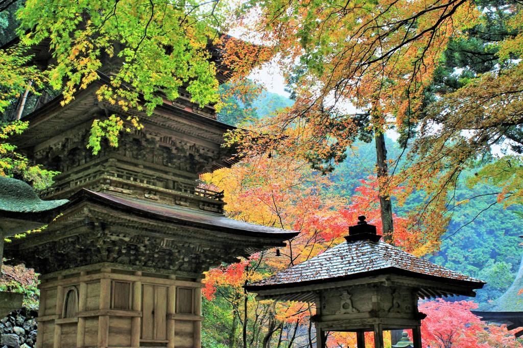 秋 横蔵寺