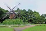 ひまわり風車