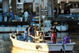 漁港の朝 #2