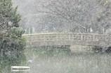 冬。雪.う~さむ~