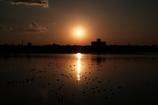 干潟の夕方Ⅱ