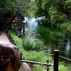透き通る川の美しさ・・・