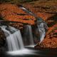 秋色の荷担滝(上流)