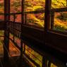 紅葉の回廊