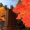 紅葉の十三重塔