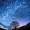 星空に吸い込まれそうな夜