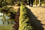 庭園を歩く