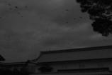 金沢城を覆う影