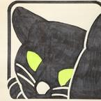 寝グセ毛のある猫
