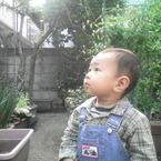 Jumji
