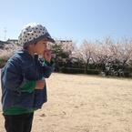 Kayashin